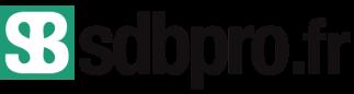 logo-sdbpro-retina-600x160-px
